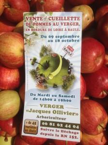 vente cueillette de pommes dans le verger collection du Val de Baule près de Beaugency et Meung sur Loire dans le Val de Loire