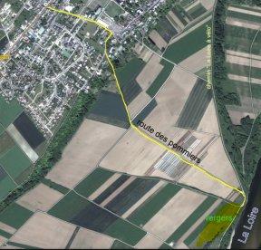 Verger collection du Val de Loire à Baule dans le Loiret en région Centre Val de Loire