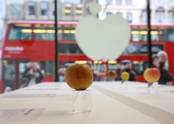 pomme Londres