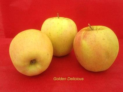pomme-val-de-Loire-golden-delicious