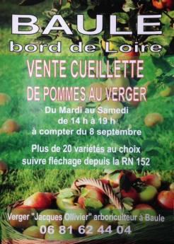 vente cueillette pommes du Val de Loire à Baule Loiret