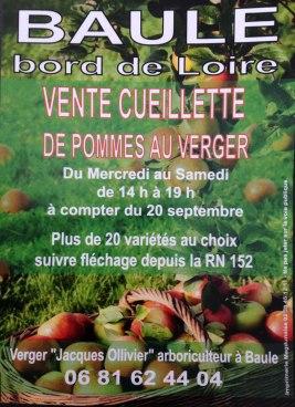 vente cueillette de pommes à Baule dans le Loiret