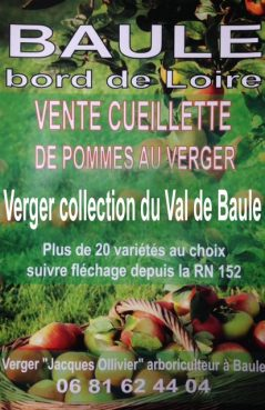 vente cueillette pommes du Val de Loire